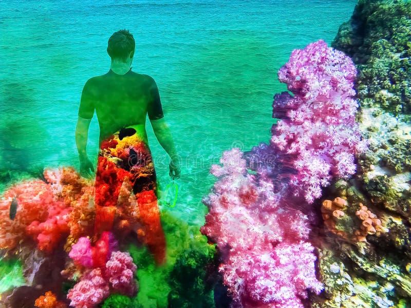 Den unga mannen i dykningdr?kt g?r till havet i sommar utomhus arkivfoto