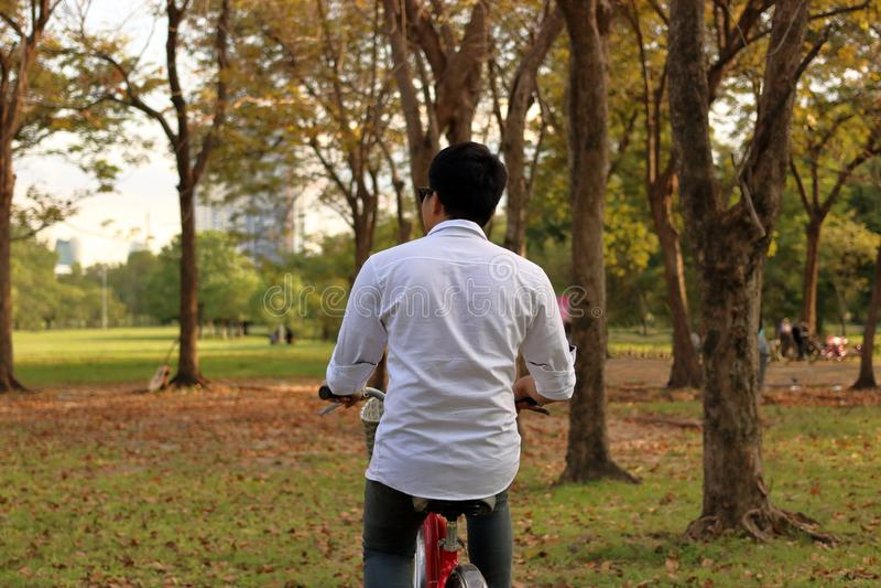Den unga mannen rider cykeln i parkera royaltyfri bild