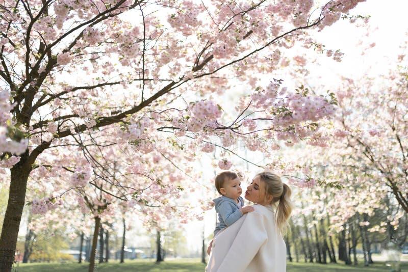 Den unga modermamman som rymmer hennes litet, behandla som ett barn sonpojkebarnet under att blomstra SAKURA Cherry tr?d med fall royaltyfri foto