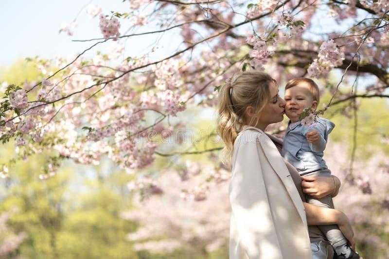 Den unga modermamman som rymmer hennes litet, behandla som ett barn sonpojkebarnet under att blomstra SAKURA Cherry tr?d med fall fotografering för bildbyråer