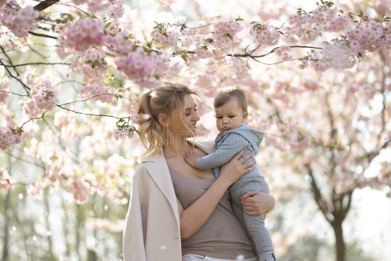 Den unga modermamman som rymmer hennes litet, behandla som ett barn sonpojkebarnet under att blomstra SAKURA Cherry tr?d med fall arkivbild
