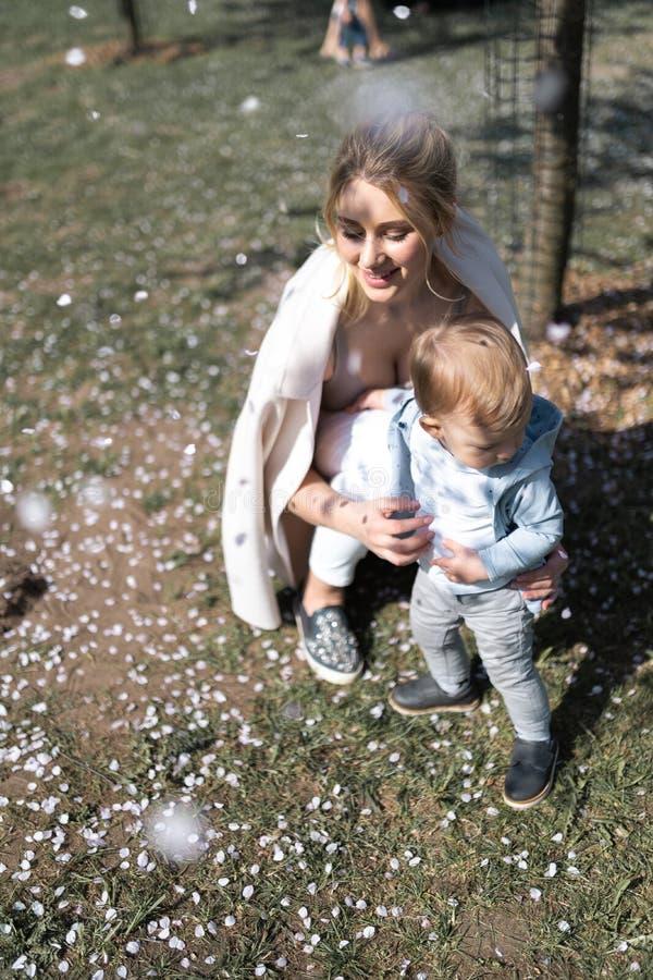 Den unga modern som g?r med henne, behandla som ett barn pojkebarnet som sonen i parkerar under Sakura tr?d arkivfoton