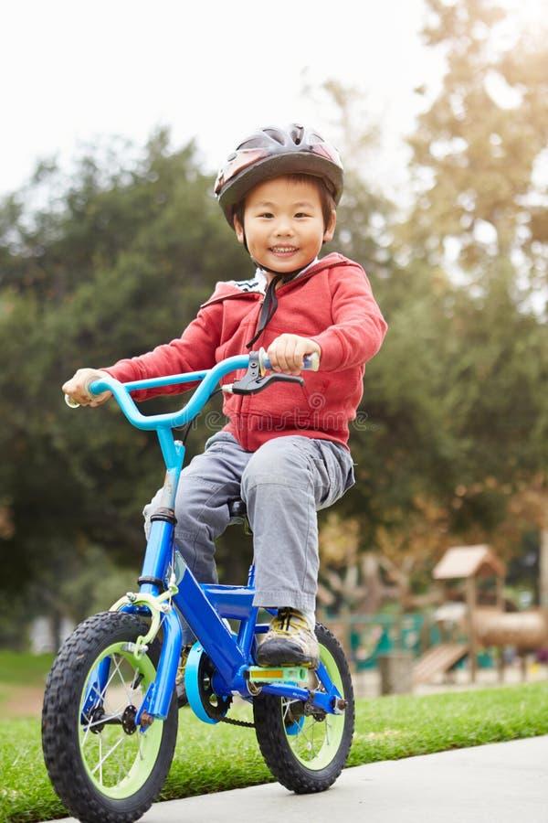 Den unga pojkeridningcykeln parkerar in royaltyfri fotografi