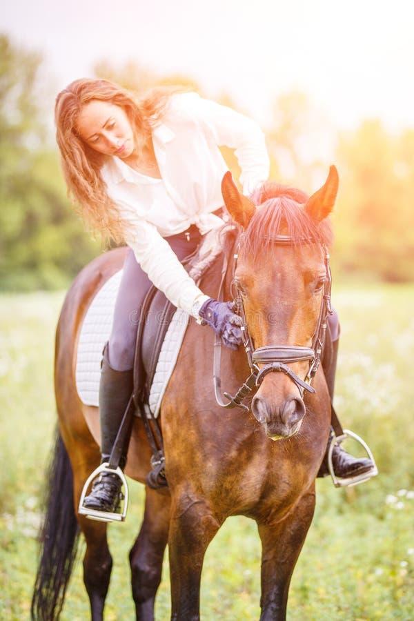 Den unga ryttareflickan böjde till hästen för att ge en komplimang arkivbilder