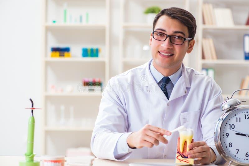 Den unga tandläkaren som arbetar i tandläkekonstsjukhuset royaltyfri fotografi