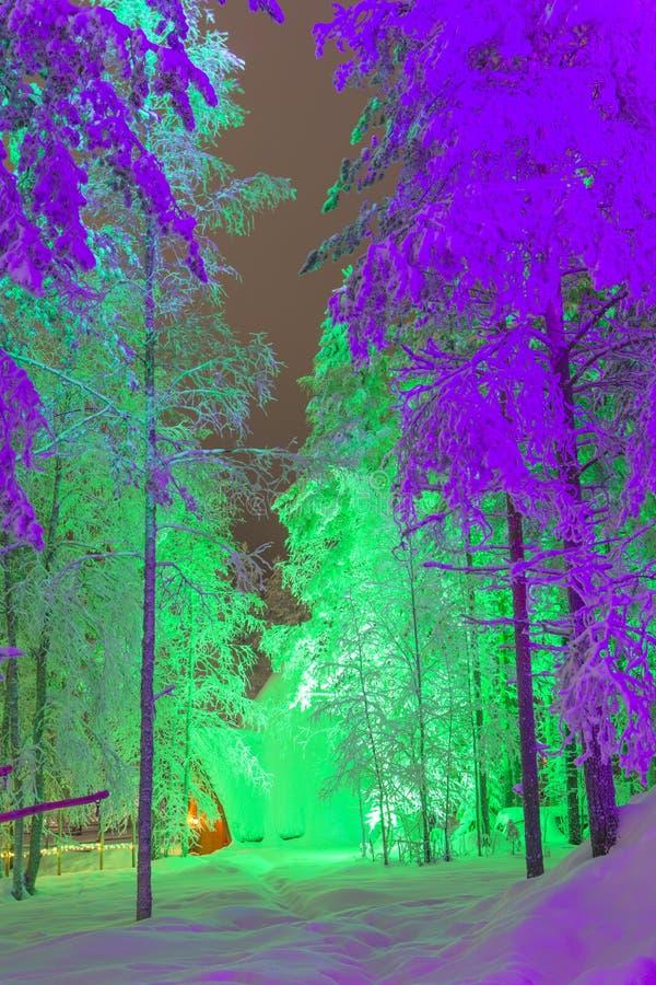 Den unika Lapland Suomi igloo över den polara cirkeln i Finland på jul tajmar framme av den fantastiska vintern Forest Scenery arkivfoton