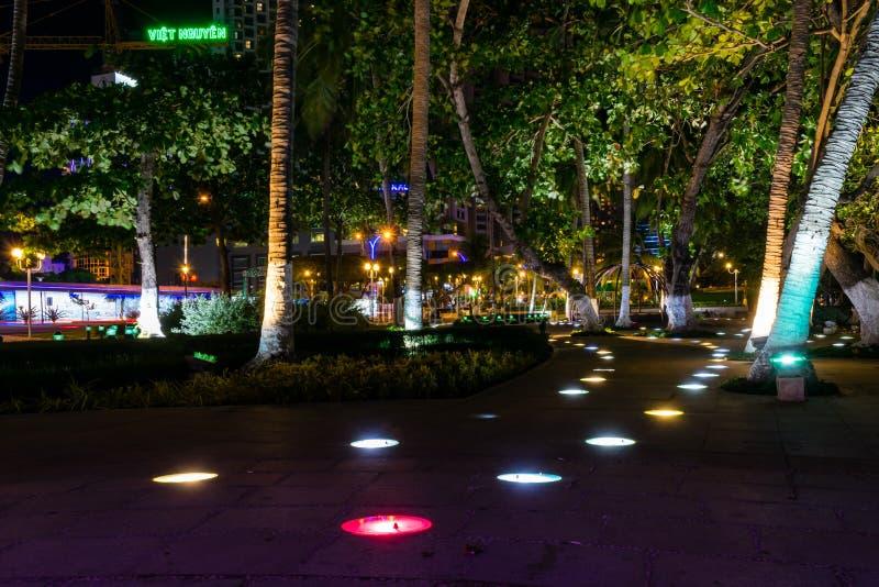 Den upplysta banan i parkerar mellan palmträd på natten fotografering för bildbyråer