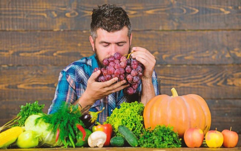Den uppsökte mannen rymmer druvaträbakgrund Bonde med den självodlade skörden på tabellen Organisk skördbonde för grönsaker royaltyfria bilder