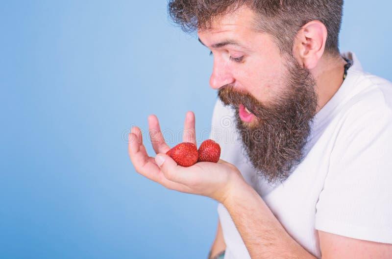 Den upps?kte hipsteren rymmer jordgubbar g?mma i handflatan p? Mannen som ropar den hungriga giriga framsidan med sk?gget, ?ter j royaltyfria bilder
