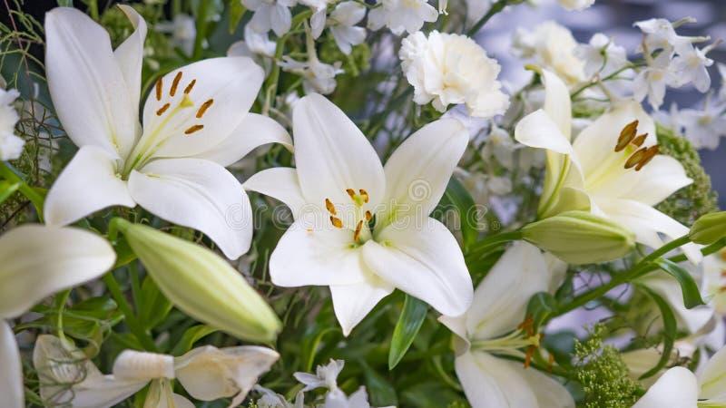 Den ursnygga buketten av vita liljor och nejlikor blommar royaltyfria foton