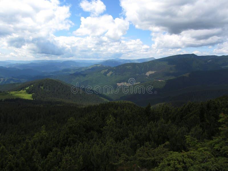 Den utöver det vanliga skönheten av de Carpathian bergen fotografering för bildbyråer