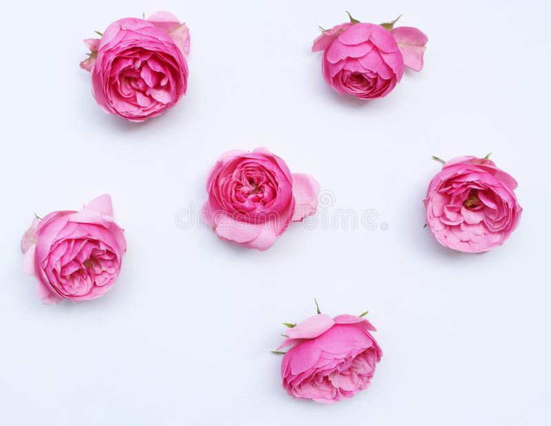Den utformade skrivbords- platsen med nya rosa rosor kopierar utrymme på den vita tabellen Lekmanna- lägenhet, bästa sikt Begrepp royaltyfri fotografi
