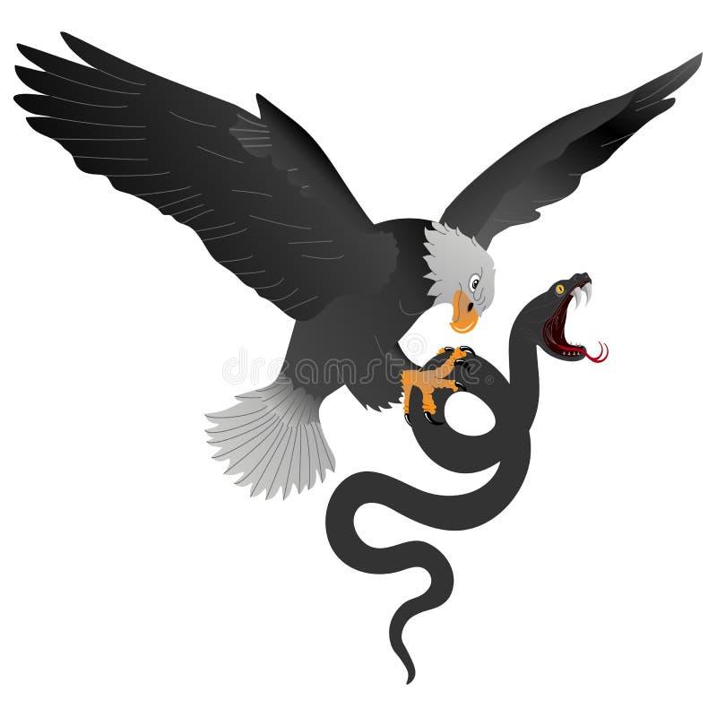 Den väldiga bergörnen pinar en stor svart orm stock illustrationer
