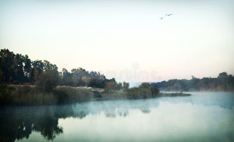Den Vaal floden arkivbild