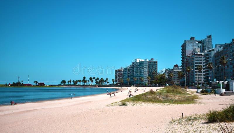 Den vackra stranden Pocitos, Montevideo, Uruguay arkivbild