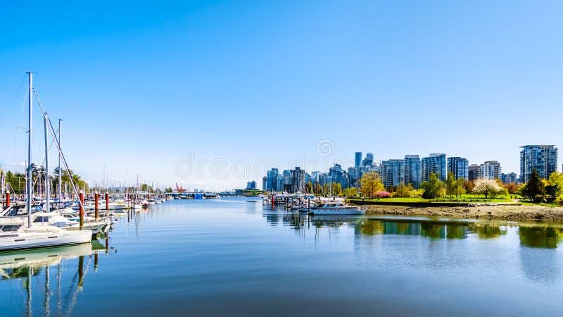 Den Vancouver horisonten som beskådas från den gå och cykla banan på skyddsmuren mot havet i Stanley Park royaltyfria bilder