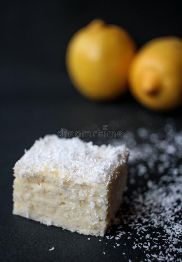Den vaniljkakan och kokosnöten gjorde hemma royaltyfri fotografi