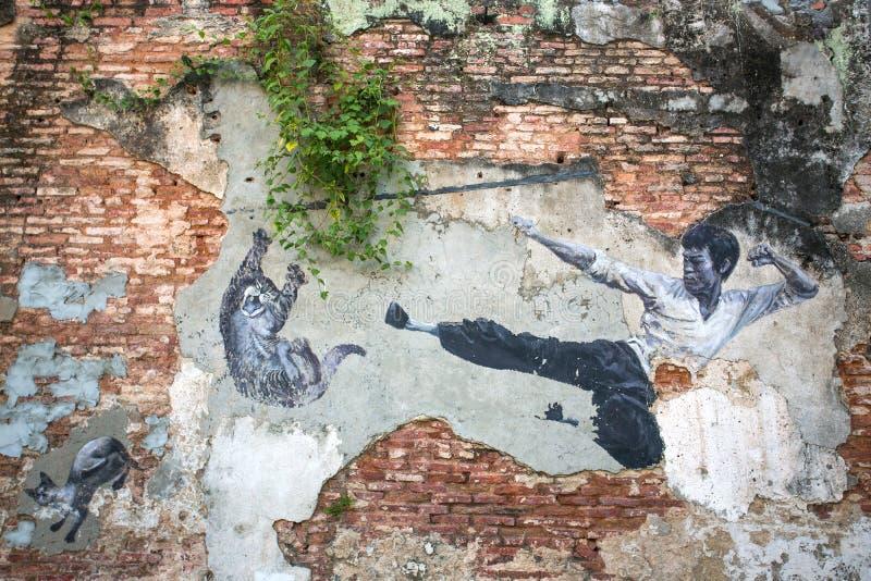 """""""Den verkliga Bruce Lee Would Never Do This"""" gatakonst arkivbilder"""