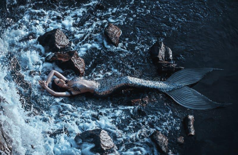 Den verkliga sjöjungfrun royaltyfria foton
