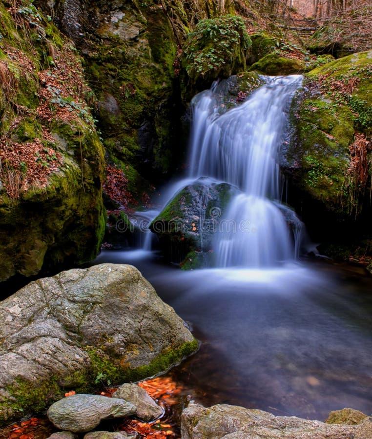 Den vertikala vattenfallet med vaggar och sidor royaltyfri foto