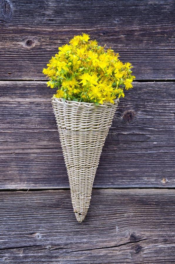 Den vide- korgen på den gamla lantgårdhusväggen med St Johns wort blommar arkivbild