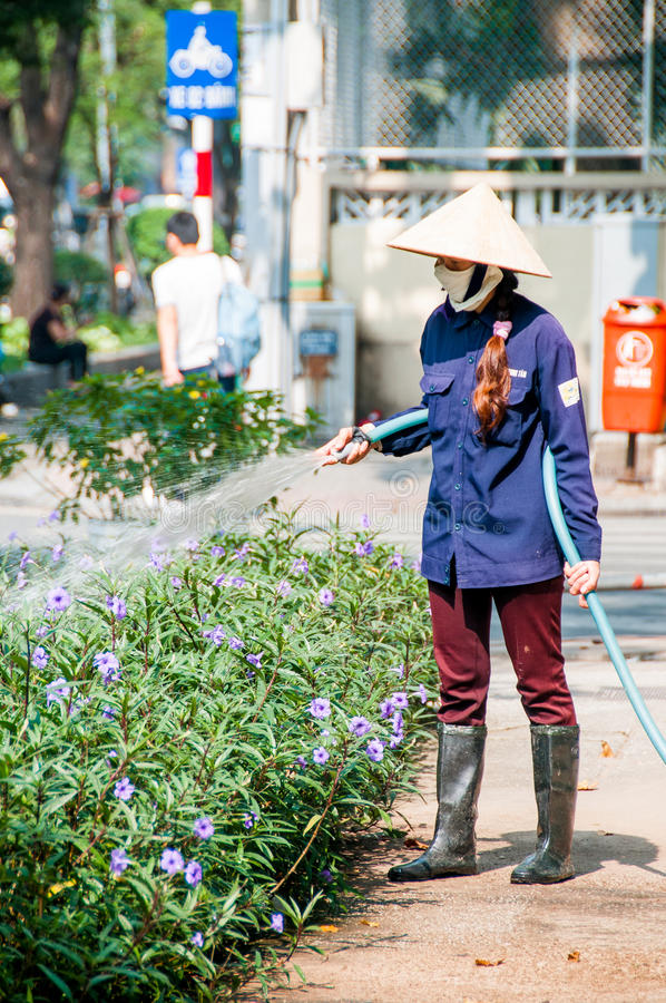 Den Vientnam kvinnaträdgårdsmästaren i enhetligt bevattna träd med den trädgårds- slangen i stad parkerar, trädgårdsmästaren som  royaltyfri bild