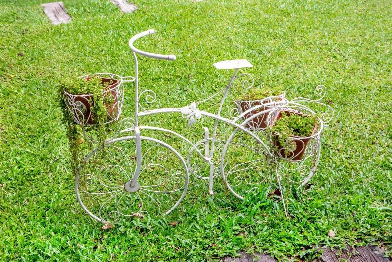 Den vita dekorativa cykeln med växter i parkerar arkivbild