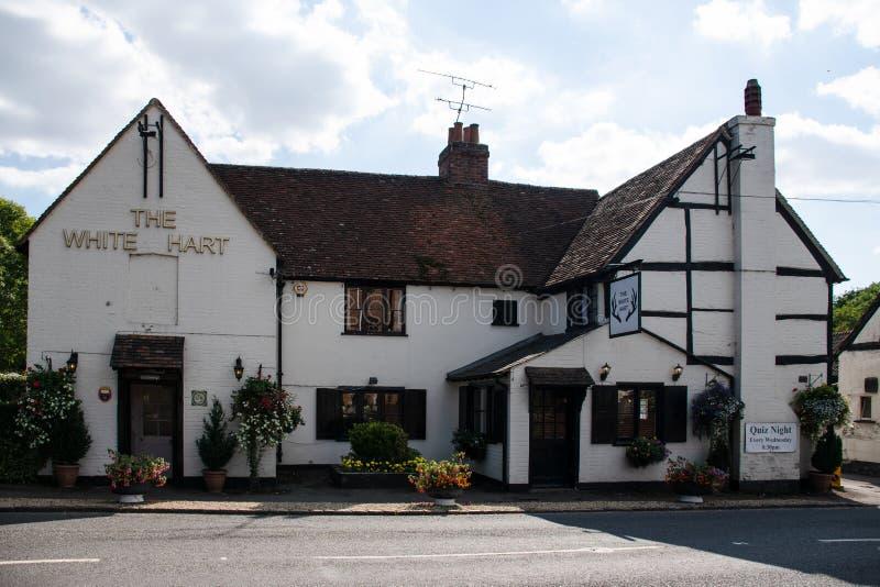 Den vita Hart Pub royaltyfri foto