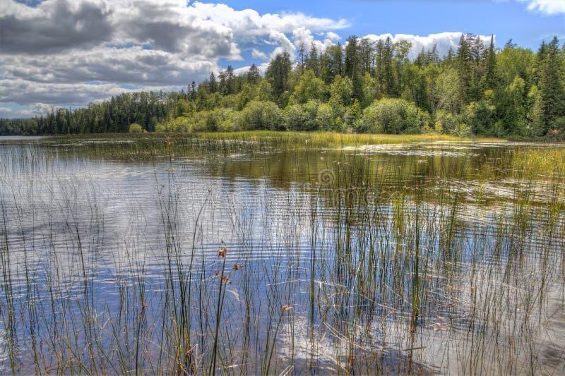 Den vita sjön provinsiella Park är isloated parkerar lokaliserat nära Mobert och White River royaltyfria bilder