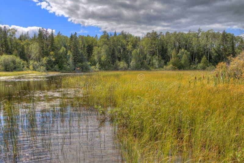 Den vita sjön provinsiella Park är isloated parkerar lokaliserat nära Mobert och White River arkivfoton