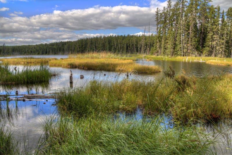 Den vita sjön provinsiella Park är isloated parkerar lokaliserat nära Mobert och White River arkivbilder