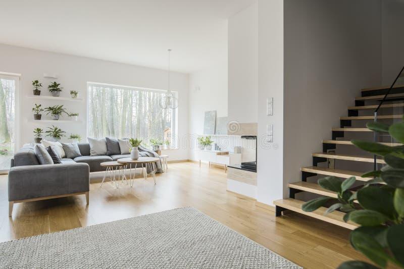 Den vita vardagsruminre med grå färger tränga någon soffan, ny gräsplan p royaltyfria foton