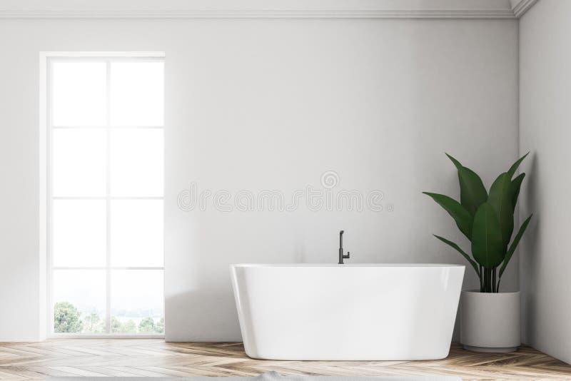 Den vita vindbadruminre, badar och planterar royaltyfri illustrationer