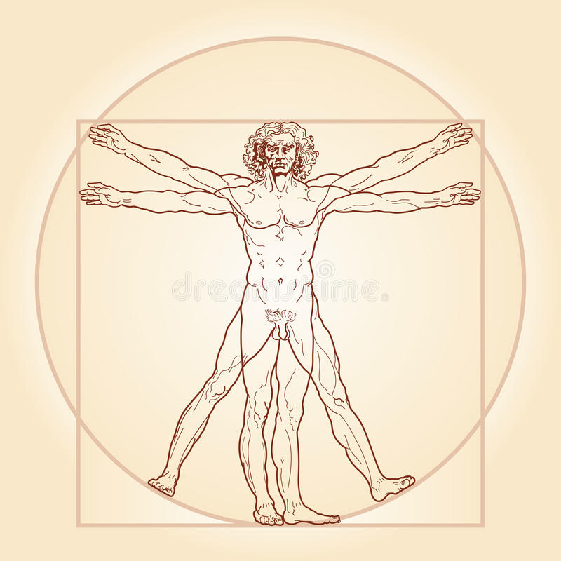 Den Vitruvian mannen ( Homo vitruviano)