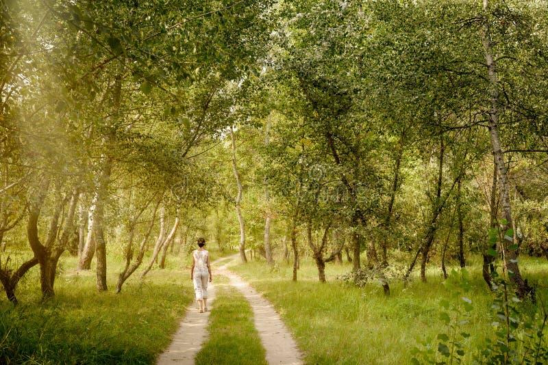 Den vuxna kvinnan går i skogen royaltyfri fotografi