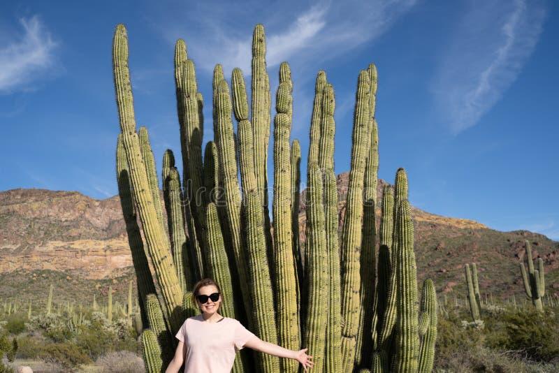 Den vuxna kvinnan poserar med en stor kaktus för organrör i Arizona på den nationella monumentet arkivbilder