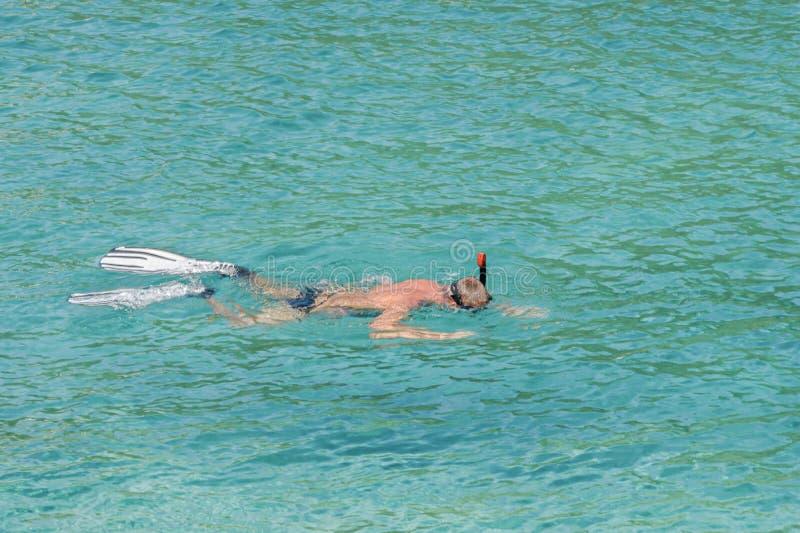 Den vuxna mannen, pension?r snorklar i turkosvattnet av Adriatiskt havet Sund fl?der som utomhus tycker om sommardag activatoren arkivbild