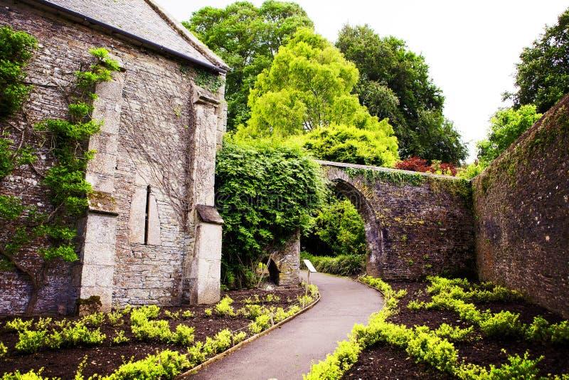 Den walled Buckland abbotskloster arbeta i trädgården i den tamar dalen royaltyfri fotografi
