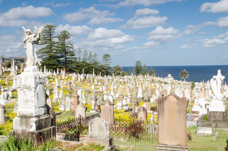 Den Waverley kyrkogården är det statliga arvet listad kyrkogård i ett iconic läge i östliga förorter för Sydney ` s, 86.000 kropp arkivbild