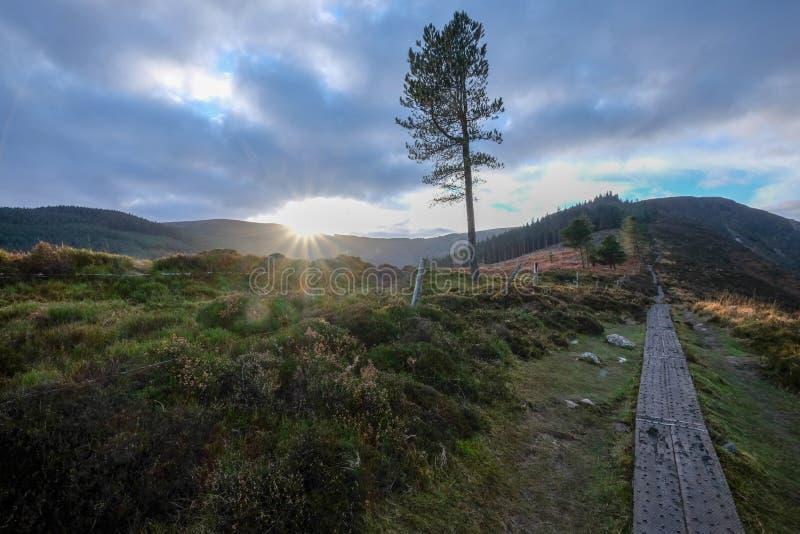 Den Wicklow bergnationalparken arkivbilder