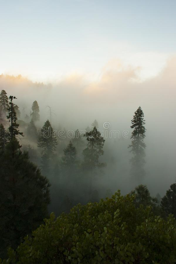 In den Wolken auf den Berg Sierra Nevada ist ein mou lizenzfreie stockbilder