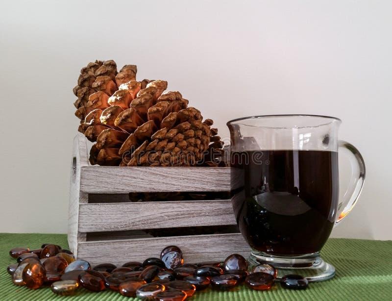Den Wood asken med sörjer kottar och rånar av svart kaffe arkivfoto