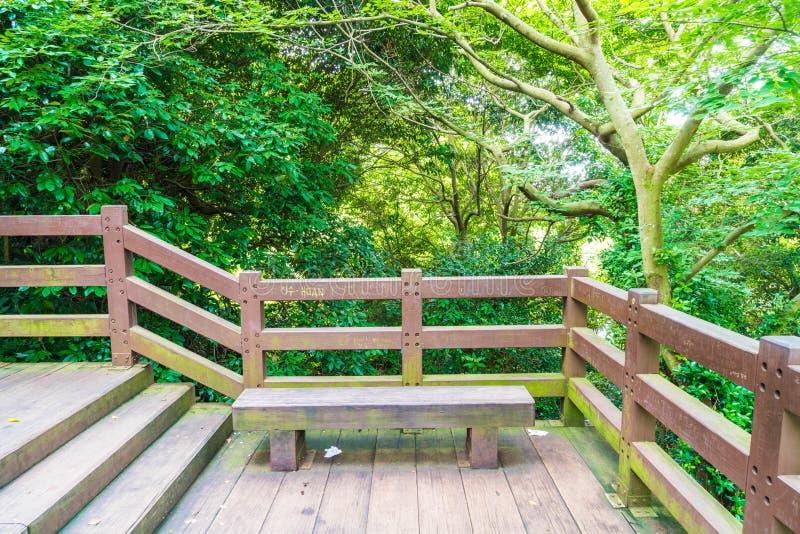 den wood gångbanan i trädgård på Cheonjeyeon faller, den Jeju ön fotografering för bildbyråer