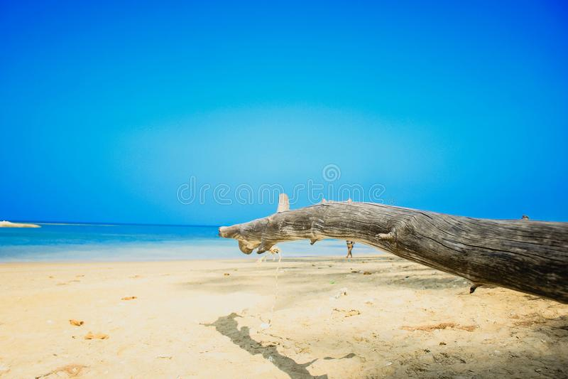 Den wood punkten till havet royaltyfri foto