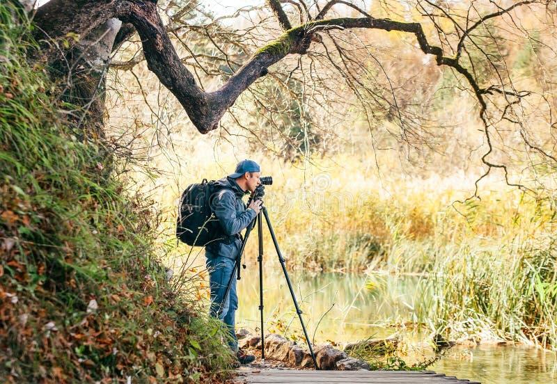 Den yrkesmässiga naturfotografen som använder en tripod, tar ett skott av arkivfoto