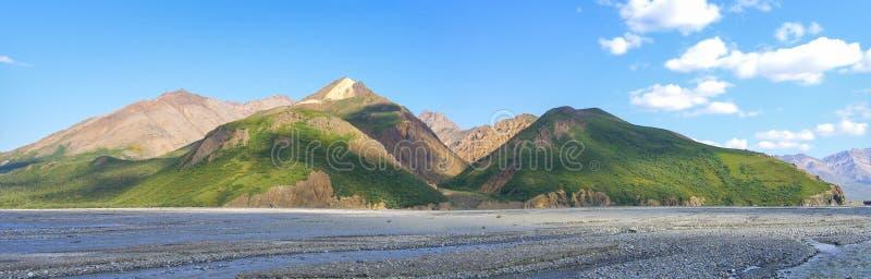 Denali国家公园-阿拉斯加 免版税库存图片