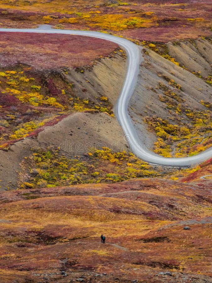 Denali在秋天的公园路 图库摄影