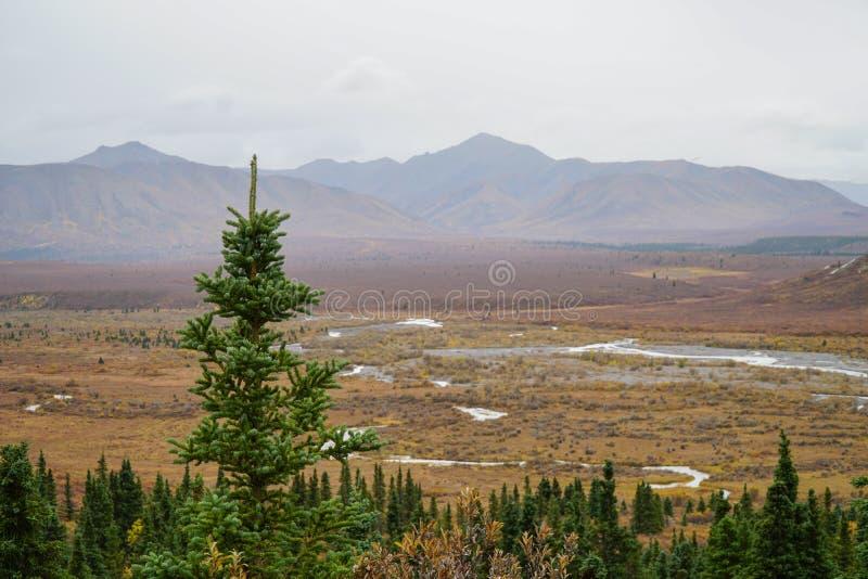 Denali Alaska royalty-vrije stock foto