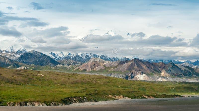 Denali landskap fotografering för bildbyråer