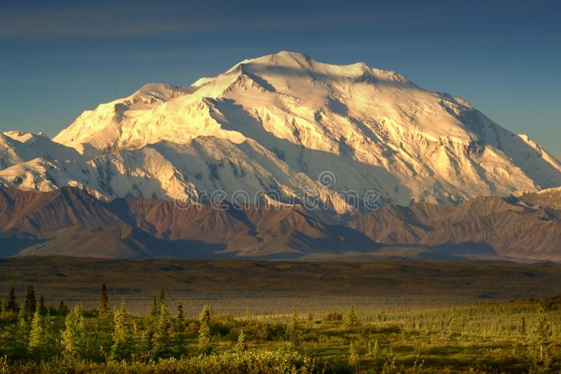 Denali Mt McKinley i sol royaltyfri fotografi